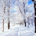 snow-street1-150x150